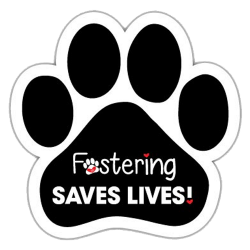 Fostering It's PAWESOME!