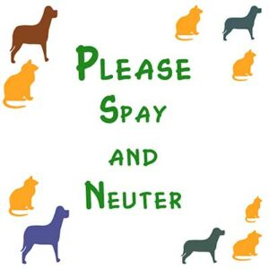 charles-county-humane-society-spay-and-neuter