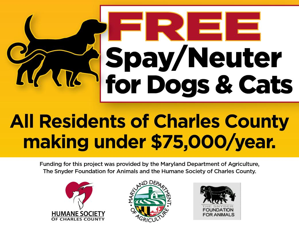 free spay and neuter for dogs